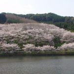 武雄 庭木ダム